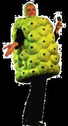 Kostuem-frucht